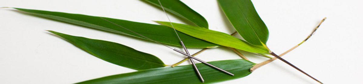 Akupunktur und chinesischer Medizin/TCM hilft bei Kinderwunsch, Wechseljahresstörung, Übergewicht, Anti-Aging, Burnout, Stress, Gedächnis-und Konzentrationsstörungen